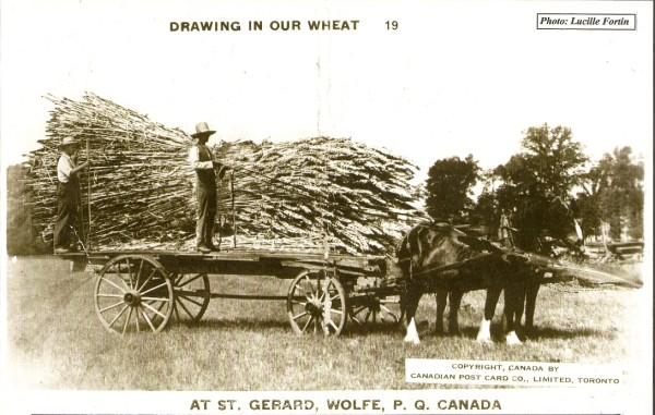 Les travaux et activit s sur la ferme histoire de weedon for Domon gilles
