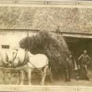 """En 1910, il fallait ramasser le grain pour le battre comme à chaque automne. Nous voyons le """"team"""" de chevaux sur la ferme des Lisée située dans le rang I du canton et dans la future municipalité de Fontainebleau. Alarie est sur le voyage alors que ses fils, Émile, Honoré et un autre membre de la famille entourent l'engin et se préparent à engranger leur récolte."""
