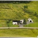 Ferme de Fernand Palardy. Située dans le rang II de Weedon, nous apercevons une plantation d'arbres sur la propriété de Fernand Palardy et de Huguette.