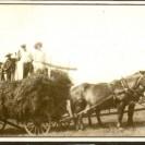 Faire les foins est souvent une activité familiale. Nous voyons deux chevaux tirant la charrette à foin sur laquelle sont montés plusieurs membres de la famille Fortin.