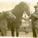 Sur sa ferme, Donat Magnan tient fièrement une jument et son poulain. Suite à cet élevage, le cultivateur s'assurait une relève à ses chevaux de trait.