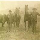 Nous voyons Ernest et Joseph Plante devant les chevaux dont ils font l'élevage. Photographie prise au début du siècle.