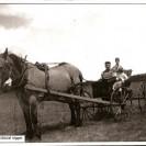 Pour le jeune Urgel Patry, son cheval Nigger était un moyen des plus précieux pour se déplacer. Nous le voyons assis sur sa voiture fine conduisant son beau cheval.