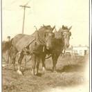 Sur la ferme de Raoul Lalumière située sur la route menant à Dudswell, nous apercevons Réal son fils labourant la terre.
