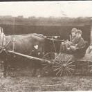 À une certaine époque, le boeuf était utilisé et attelé tout comme un cheval. Cette photographie a été prise en 1914. Elle nous montre une voiture tirée par un boeuf et conduite par le jeune Roméo Marcoux. Il était accompagné d'amis, Odule Bourque à l'avant et à l'arrière de Elphège Marcoux et de Dominique Bourque.