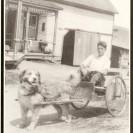 Pour aller à l'école, Urgel Patry avait son chien et sa petite voiturette. Cet animal a été très précieux pour lui.