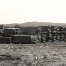 Voici la cour à bois de Rousseau Lumber où sont enlignées les nombreuses piles de madriers sciés au moulin. Cette photographie a été prise en 1977.